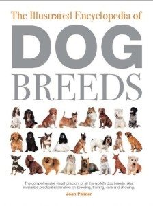 illustrated-encyclopedia-of-dog-breeds