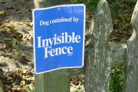 Read this before you install an invisible fence.