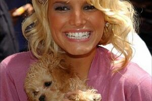 Jessica Simpson And Her Dog, 'Daisy'