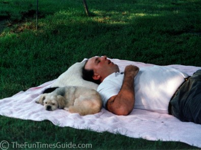 jim-dog-snoring-photo.jpg
