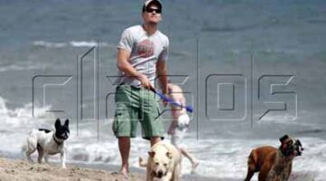 Leonardo DiCaprio Plays With Dogs On The Beach