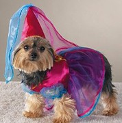 little-princess-dog-costume.jpg