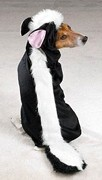 little-stinker-skunk-dog-costume.jpg
