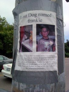 Lost dog poster. photo by Aine D on Flickr
