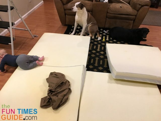See The DIY No-Sew Extra Large Dog Bed That I Made From A