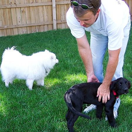 Mike playing with our two dogs in the backyard.