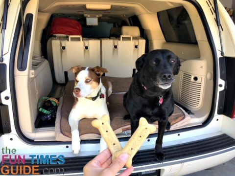 Milkbone dog treats are the ones our dogs like best.