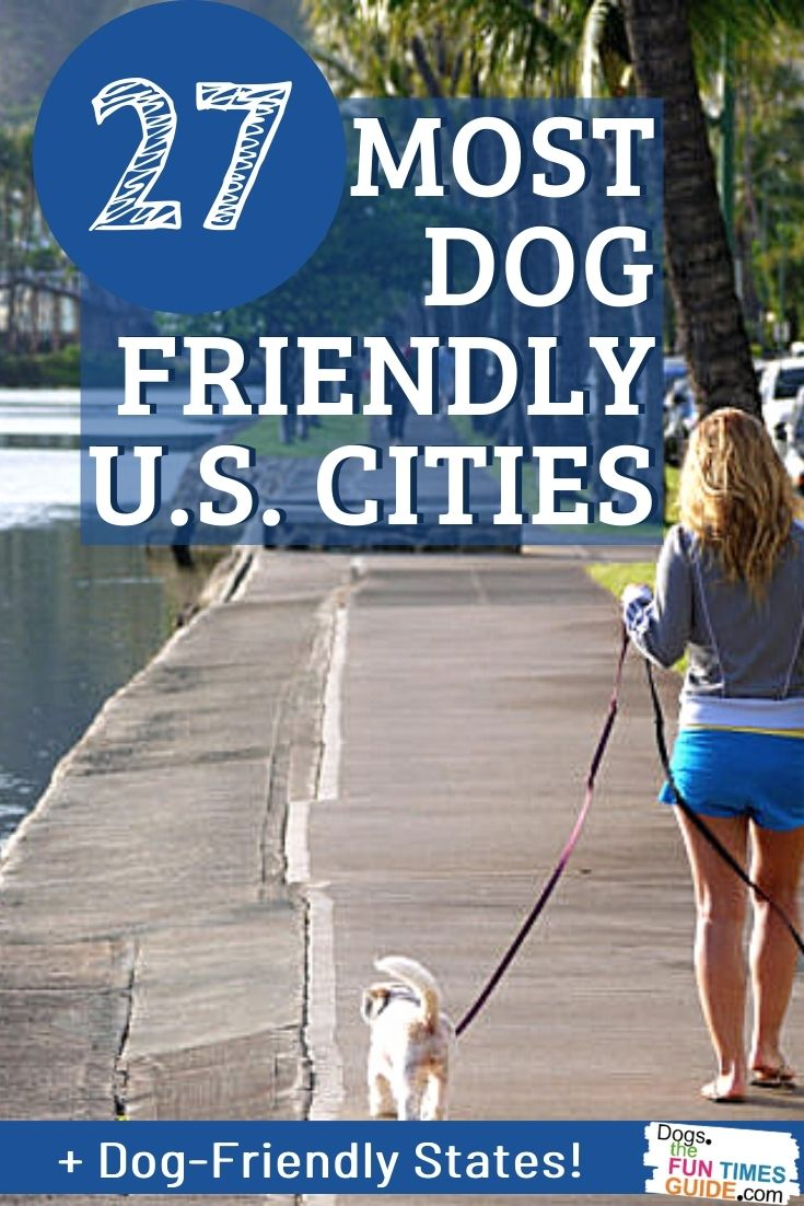 A List Of The Most Dog Friendly Cities In The U.S. For Your Dog Travel Bucket List!
