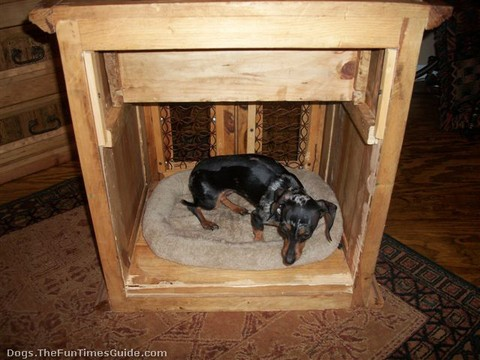 my-dog-crate-table.jpg