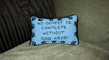 No Outfit Is Complete Without Dog Hair — Throw Pillows, Dog Dishes, And Signs With That Phrase
