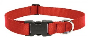 nylon-dog-collar-with-plastic-buckle