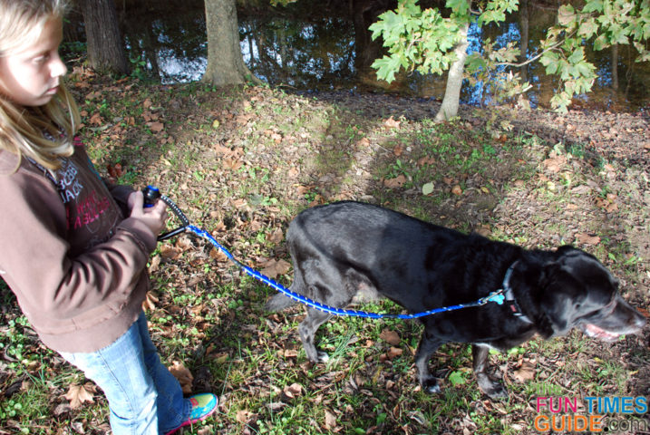See why we think the EzyDog Cujo leash is one of the best leashes for dogs.
