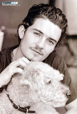 orlando-bloom-dog.jpg