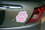 Pink Paw magnet on my car.