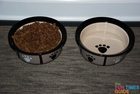 petrageous-dog-food-bowls