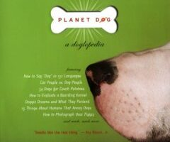Planet Dog: A Doglopedia – How To Match Your Personality Type With Your Dog's Type