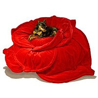 A plush red rose dog bed.