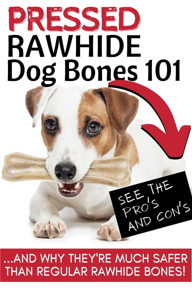 Are Pressed Rawhide Bones For Dogs Safe? The Pros, Cons, And What You Need To Know Before Giving Them To Your Dog!