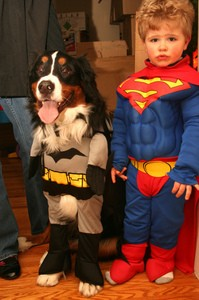 superman-and-batman-costumes-for-kids-and-dogs-by-3Neus.jpg