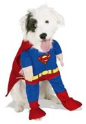 Superman dog costume... SuperDog!