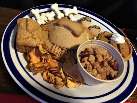 Homemade Thanksgiving food for dogs... and treats!