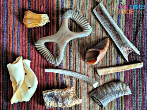 Most (but not all) of the long lasting dog chews that we review in this article.
