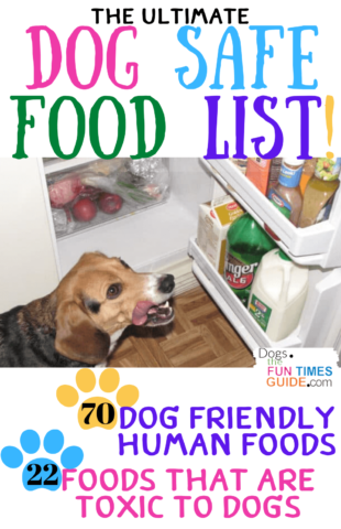 The ultimate dog safe food list - 70 dog friendly human foods + 22 foods that are toxic to dogs!