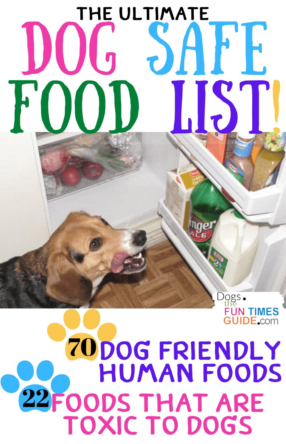 Are Human Foods OK For Dogs To Eat? See Which Ones Are Safe... And Which Ones Are NOT!