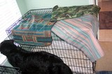 Three brand new pillow cases, draped over a dog crate.