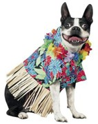 tiki-hula-skirt-dog-costume.jpg