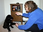 Lynnette training Tenor as a puppy to give us his toes.
