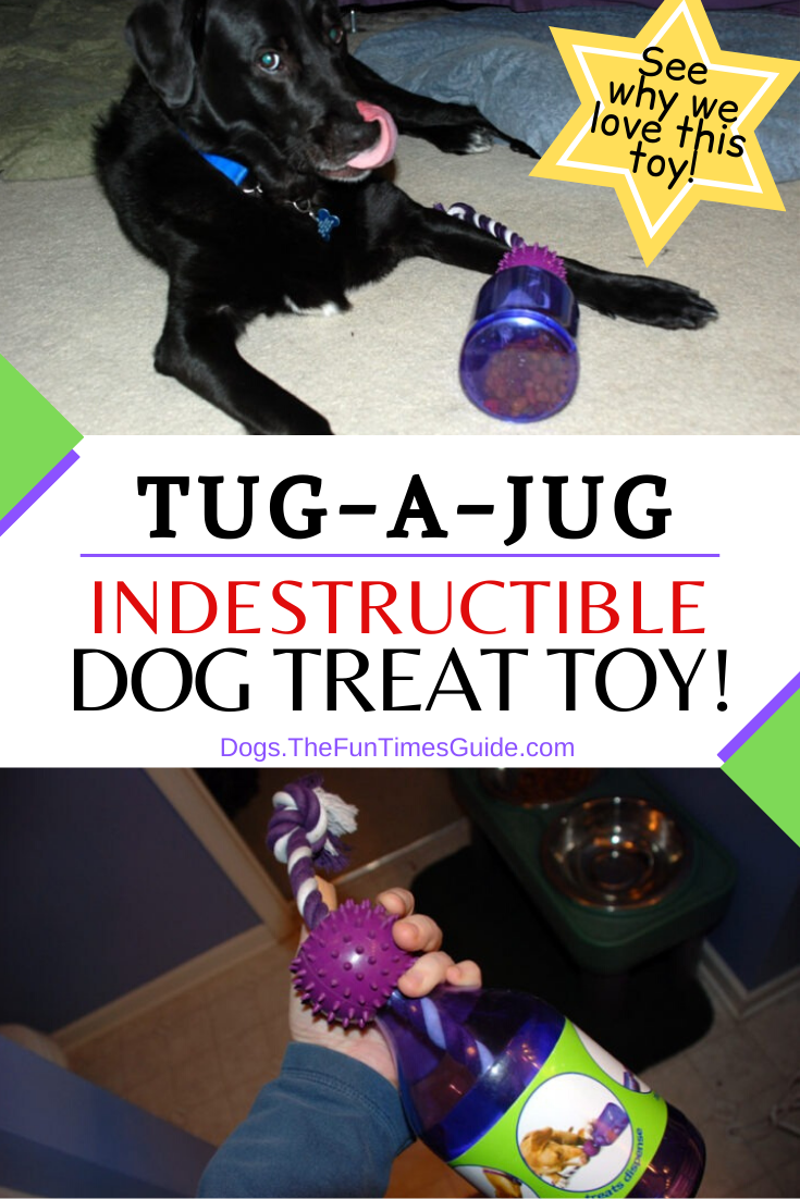 Tug-A-Jug Is A Multi-Sensory, Multi-Faceted Interactive Dog Treat Toy That\'s Dog Mom Approved!