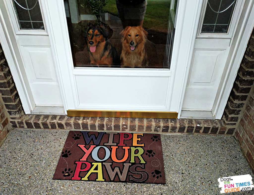 See the Pros and Cons of having two dogs in the house together.