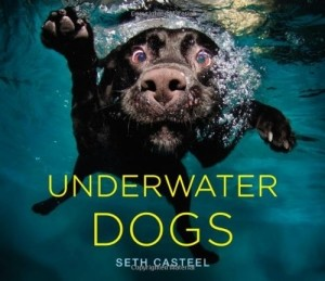 underwater-dogs-book