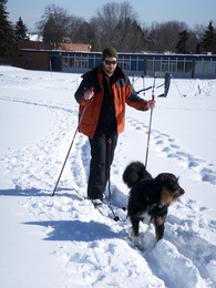 first-time-skijoring-with-one-dog-by-alt-text.jpg